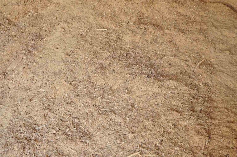 ac-sawdust-4-2